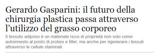 Gasparini Ansa